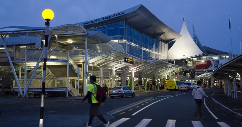 how to reach auckland airport